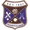 Wappen / Logo des Teams ESV Ronshausen 2