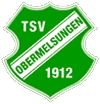 Wappen / Logo des Teams TSV Obermelsungen