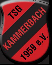 Wappen / Logo des Teams TSG Kammerbach