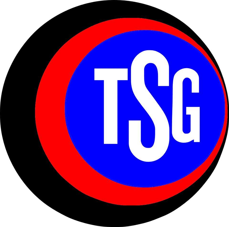 Wappen / Logo des Vereins TSG Hofherrnweiler-Unterromb.